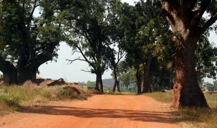 """Romain Duris : """"Au Burkina Faso, quelle énergie ! Et quelle lumière !"""""""