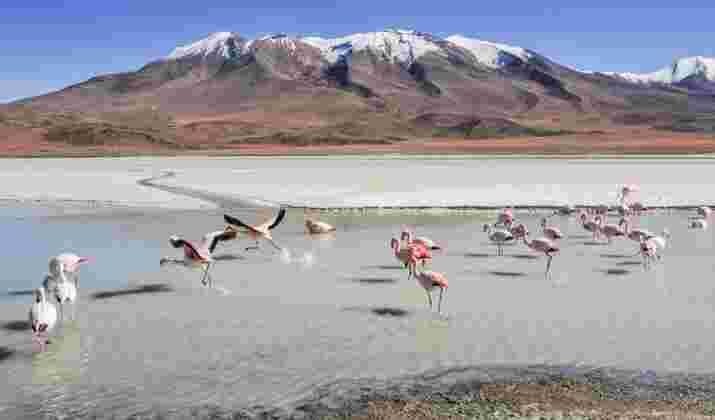 """VIDÉO : Descente vertigineuse en VTT sur la """"route de la mort"""" en Bolivie"""