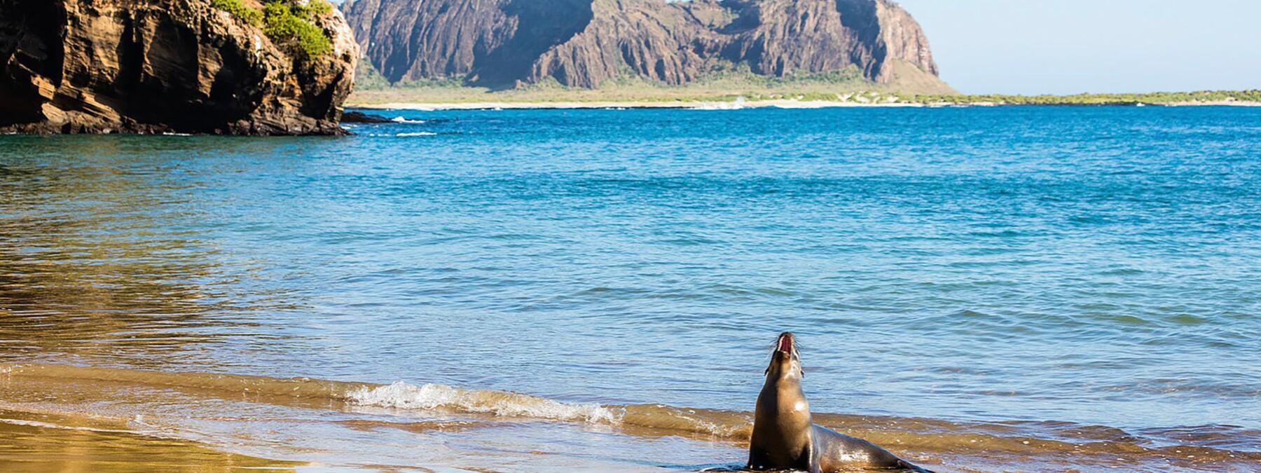 Iles Galápagos