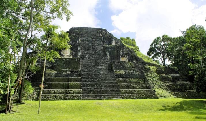 Des peintures mayas découvertes par hasard sur les murs d'une maison au Guatemala