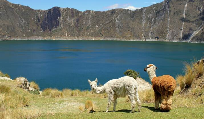 Equateur: l'eau des volcans se raréfie, source d'angoisse pour les indiens