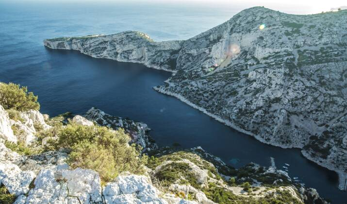 A Marseille, deux rorquals ont été observés au large des calanques