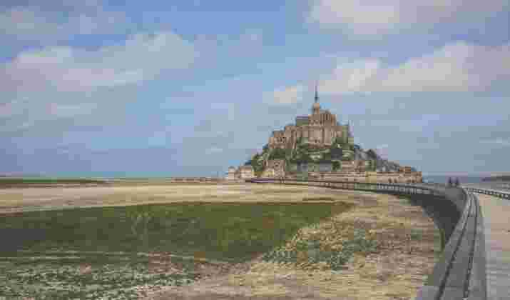 Normandie : « La nature sauvage résiste dans les villes » (2/2)