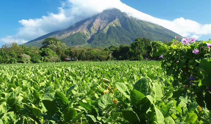 On a testé la luge sur volcan au Nicaragua