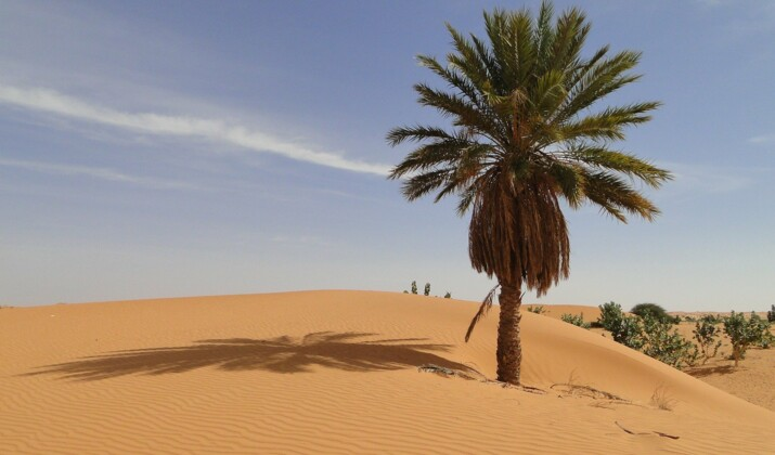 Sahara : l'Adrar mauritanien, une invitation au voyage