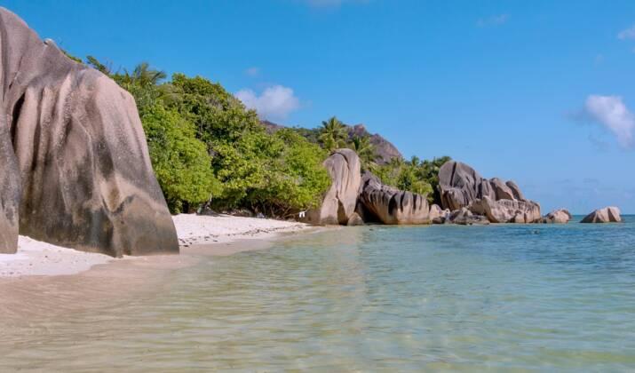 Les Seychelles, un nid à oiseaux rares