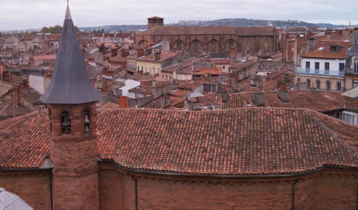 Entre Albi et Toulouse, le pastel des teinturiers, l'or bleu du pays de cocagne