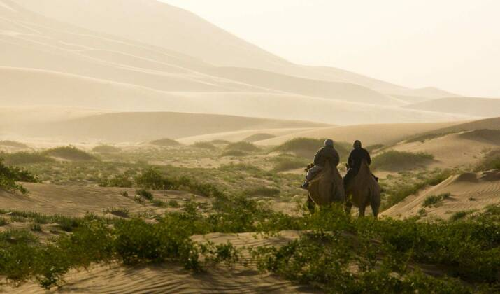 En pleine steppe mongole, nous avons suivi une famille nomade pendant la transhumance