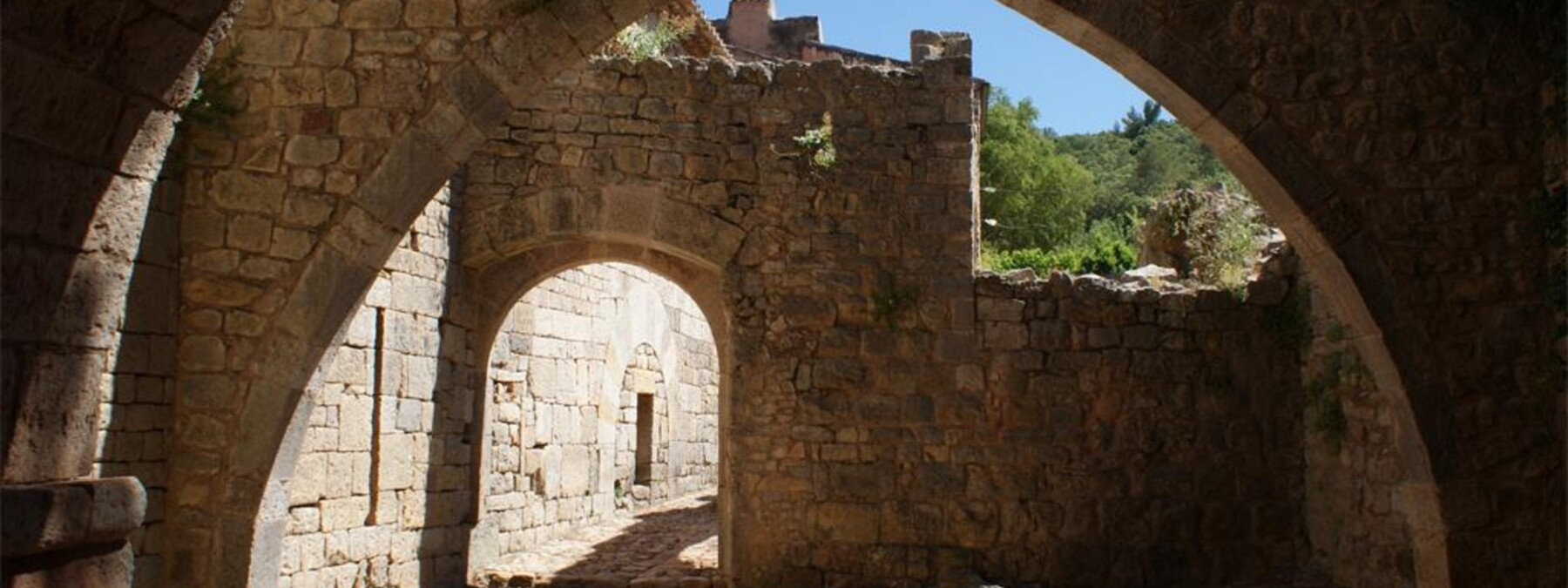 Odile Provence-Laurentides