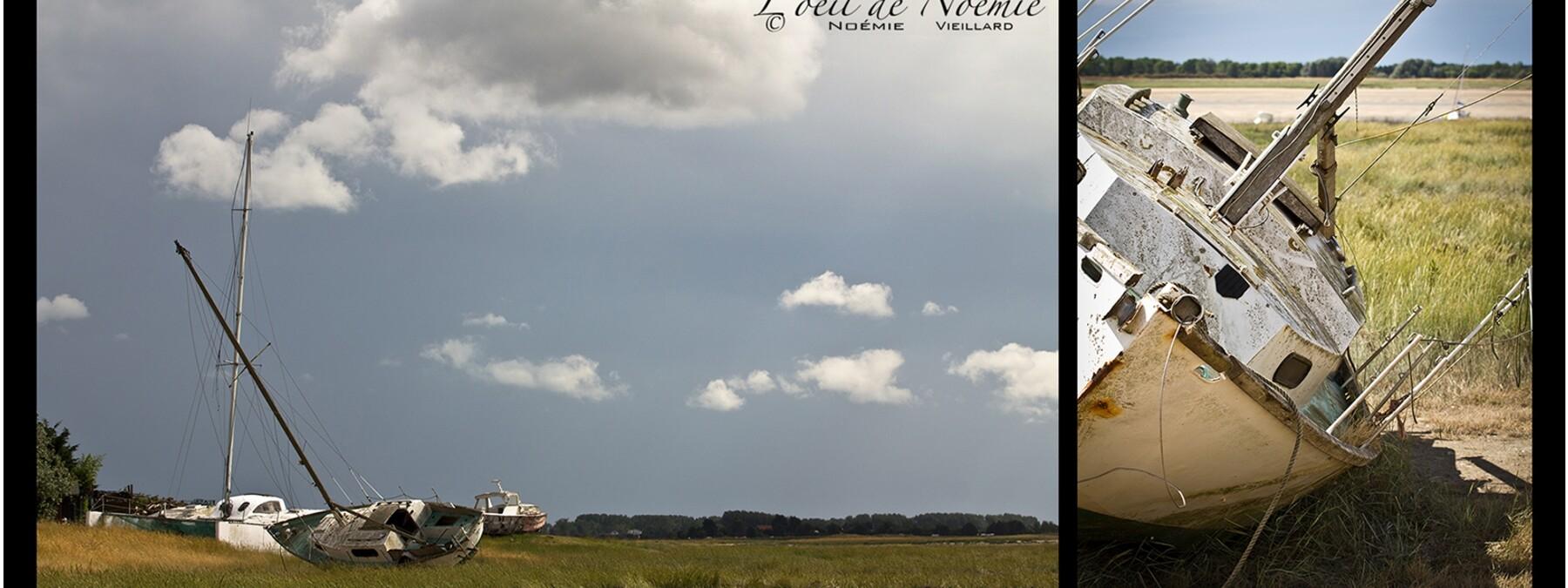 Noémie Vieillard