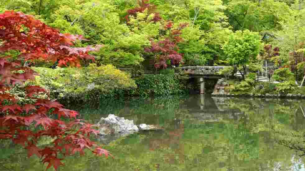 Jardin Japonais Kyoto Japon Fond D Ecran Gratuit Geo Fr