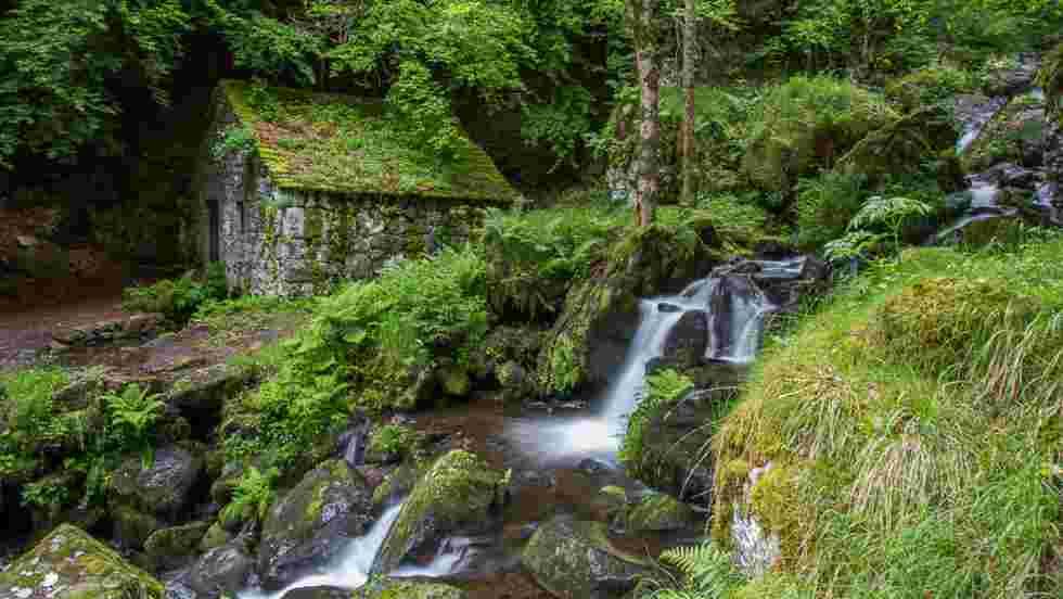 Nature Fond D Ecran Et Image Gratuits Geo Fr