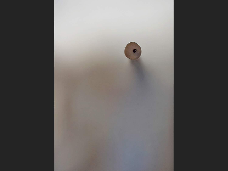 Côte escarpée