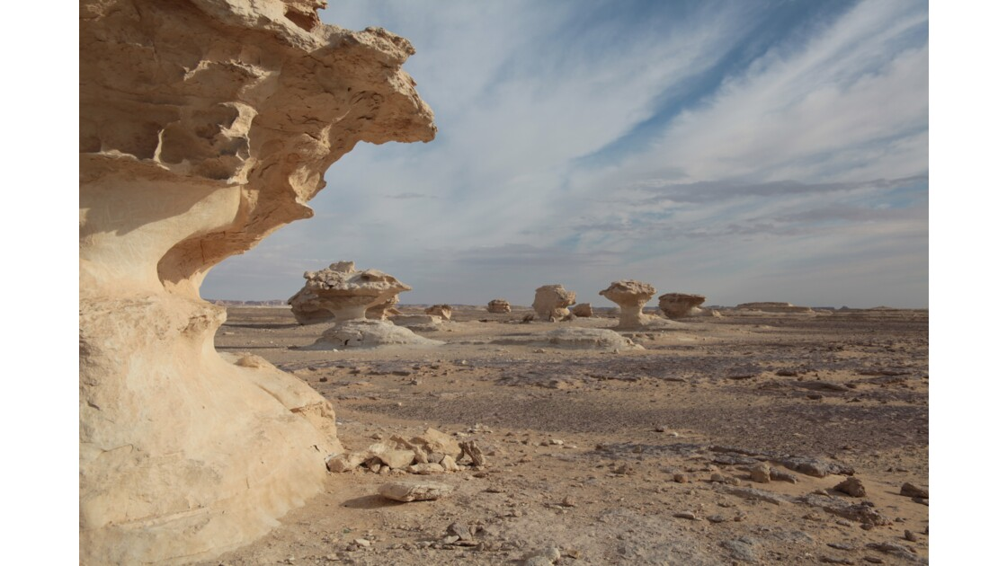 Le désert blanc au petit matin