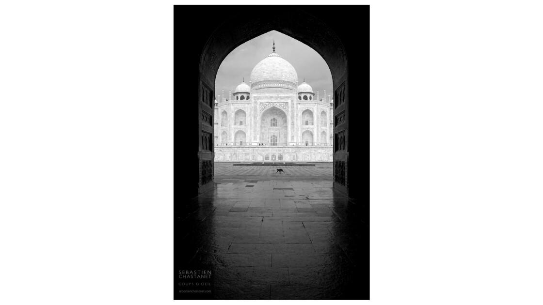 un singe au Taj Mahal