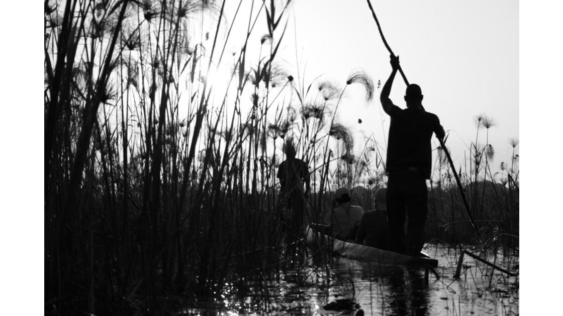 Mokoro sur le Delta de l'Okavango