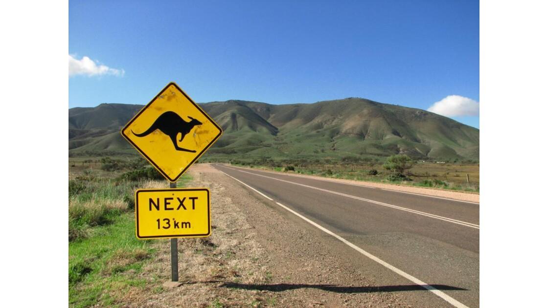 Australie__1170_.JPG