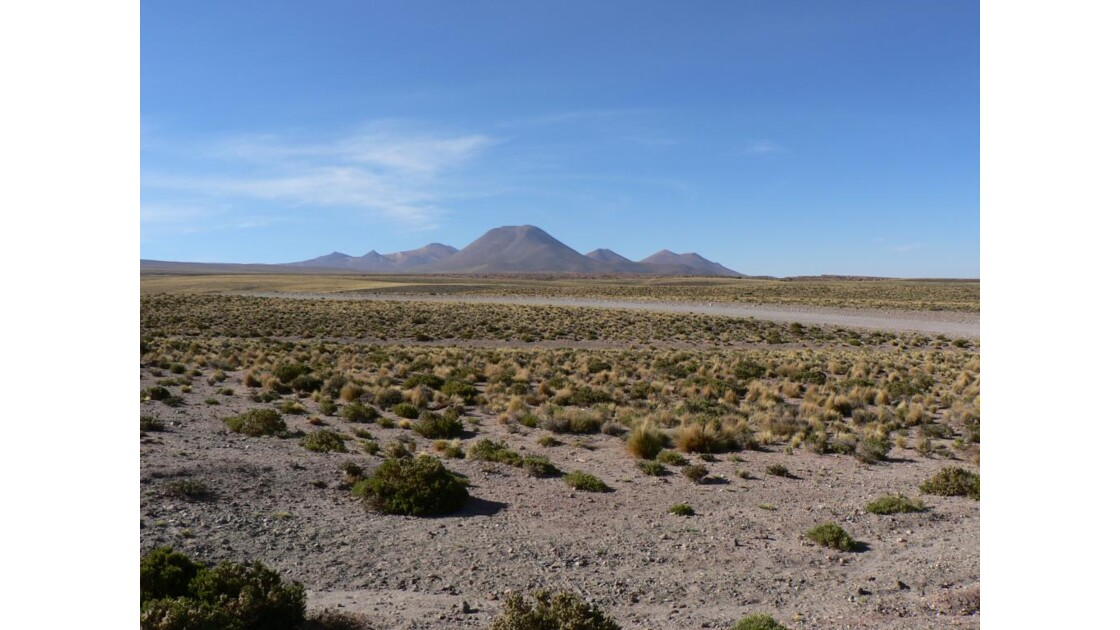 Altiplano chilien