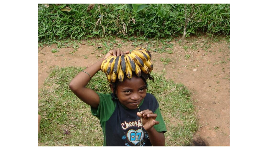 Elles sont belles mes bananes