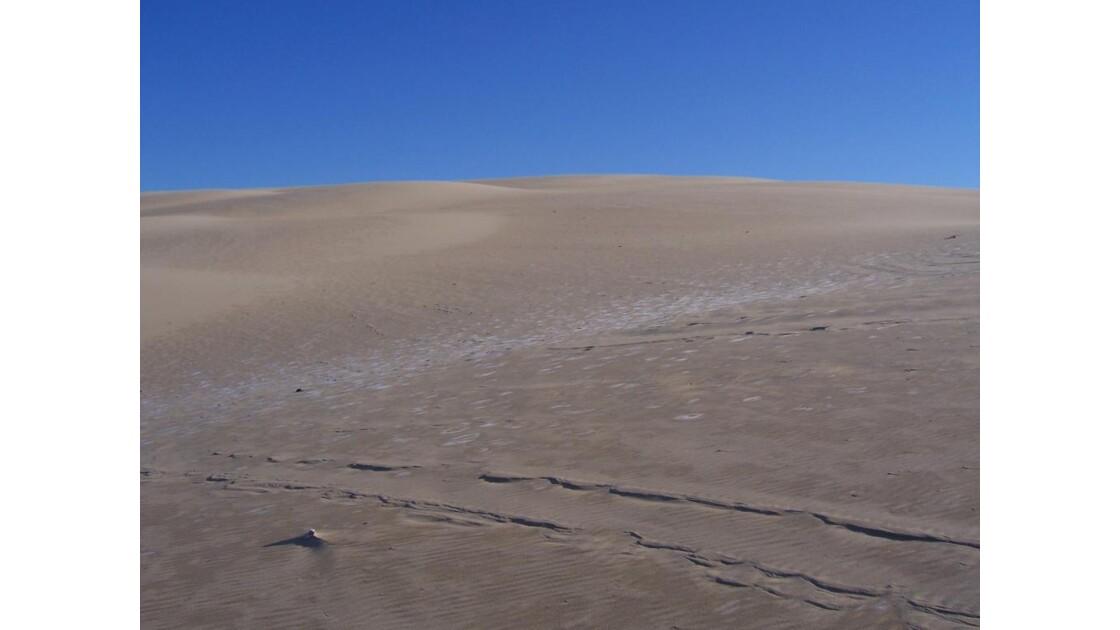 dune_2.jpg