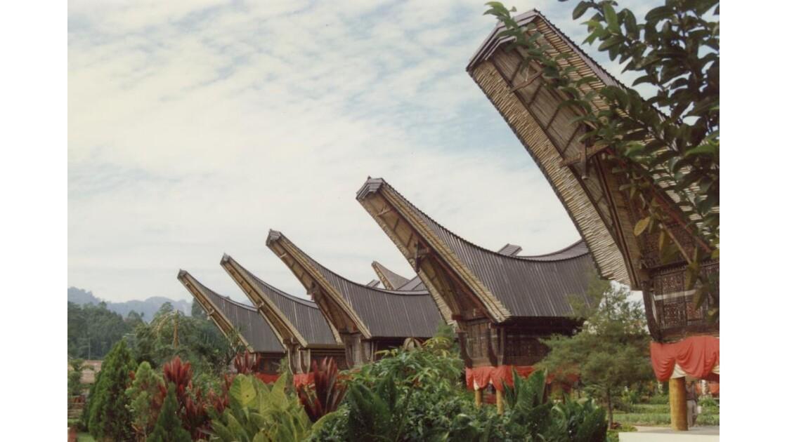 Sumatra._Splendides_maisons_sur_pilotis