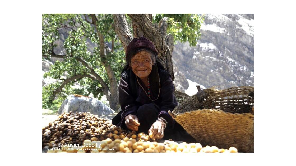 Vieille femme Ladakhie