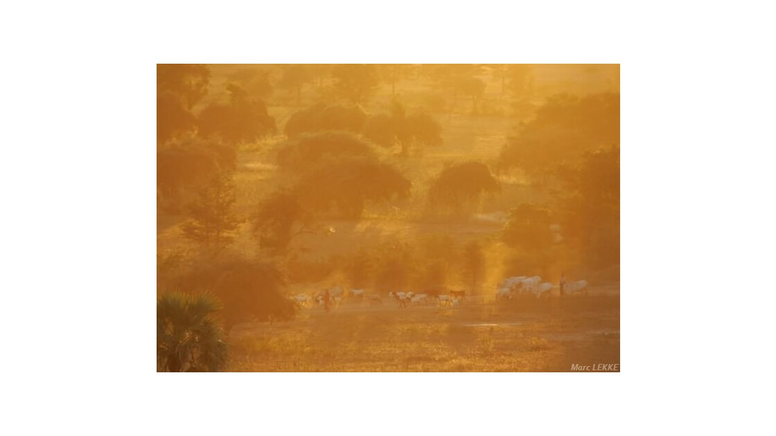 Coucher de soleil à Bagan Birmanie