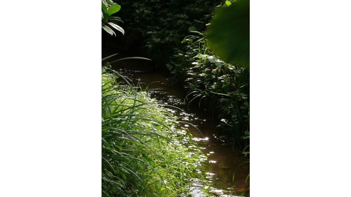 le ruisseau.