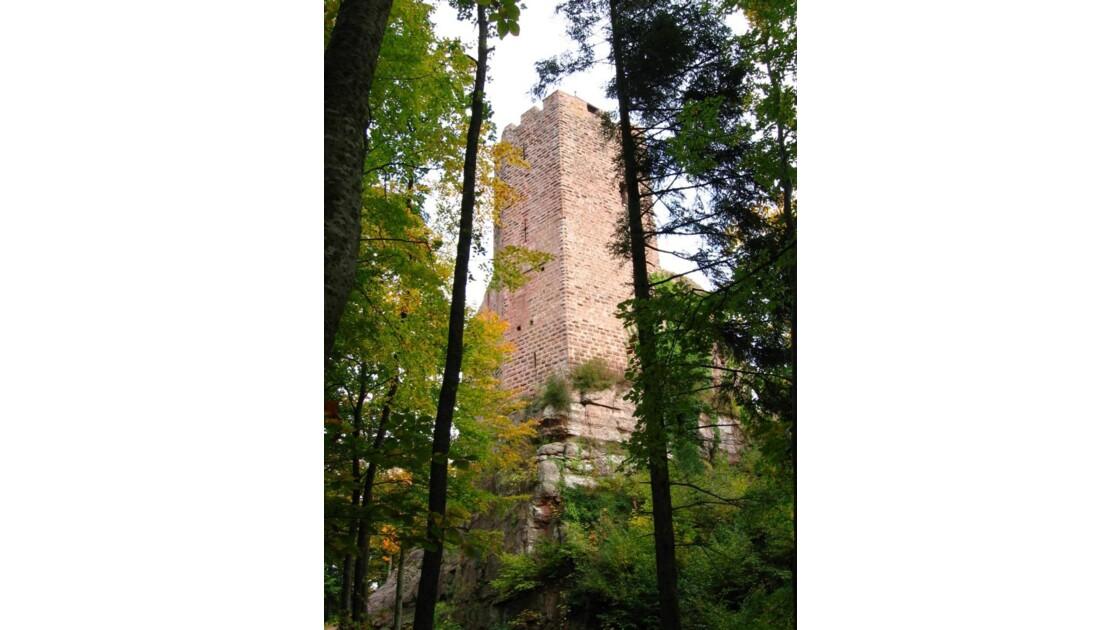Le château de Wangenbourg