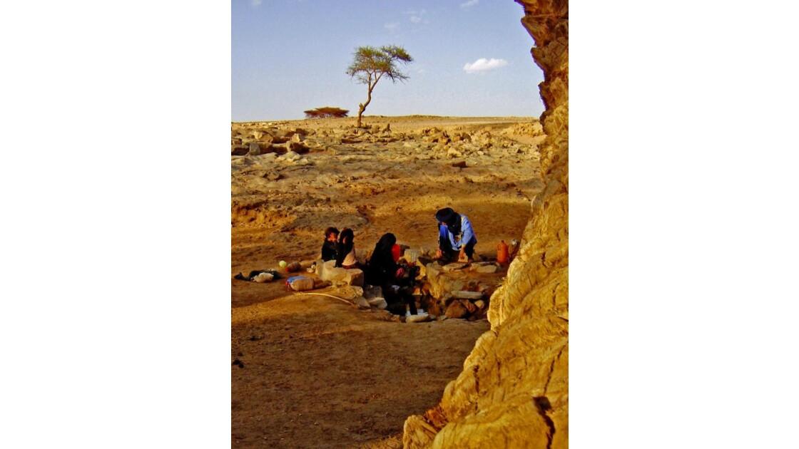 Oasis sacrée, M'Hamid, Sahara, Maroc
