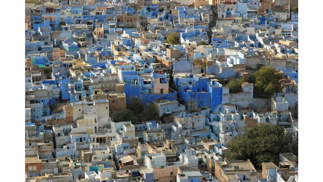 'ville bleue' jodhpur 1