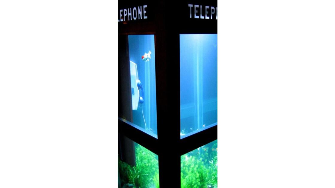 Lyon_Fete_des_lumieres_poisson_telephon