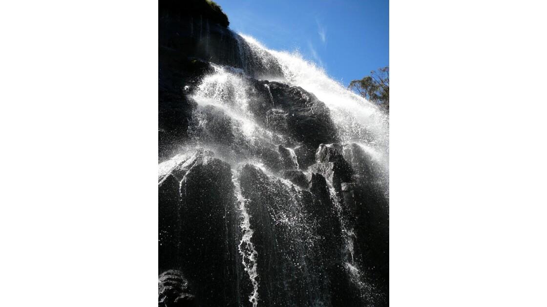 Makenzie falls