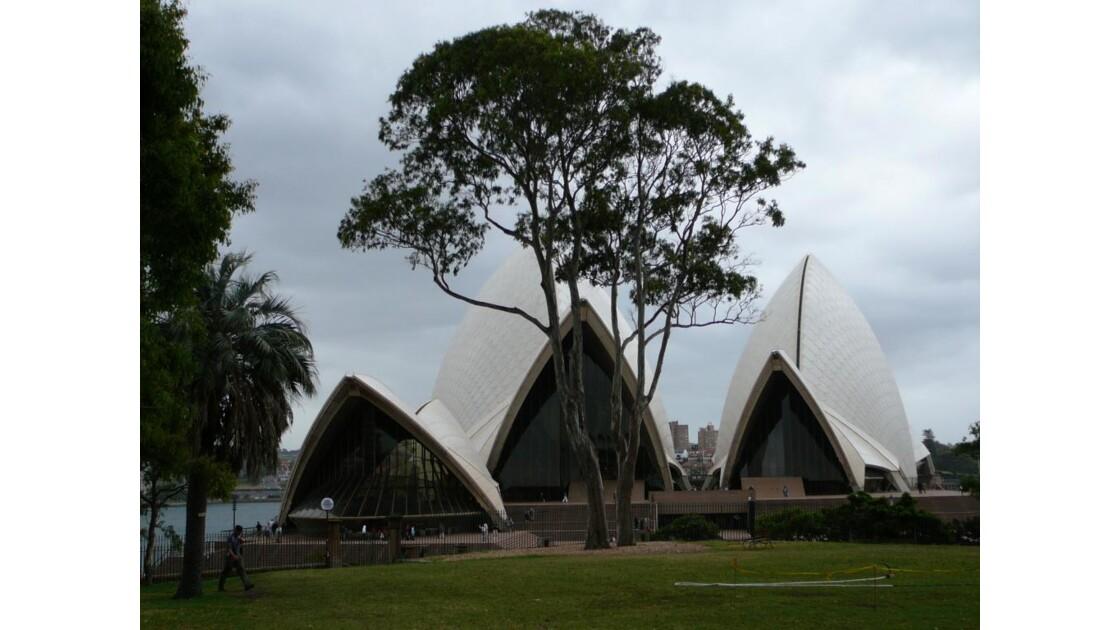 Opera House from botanic garden