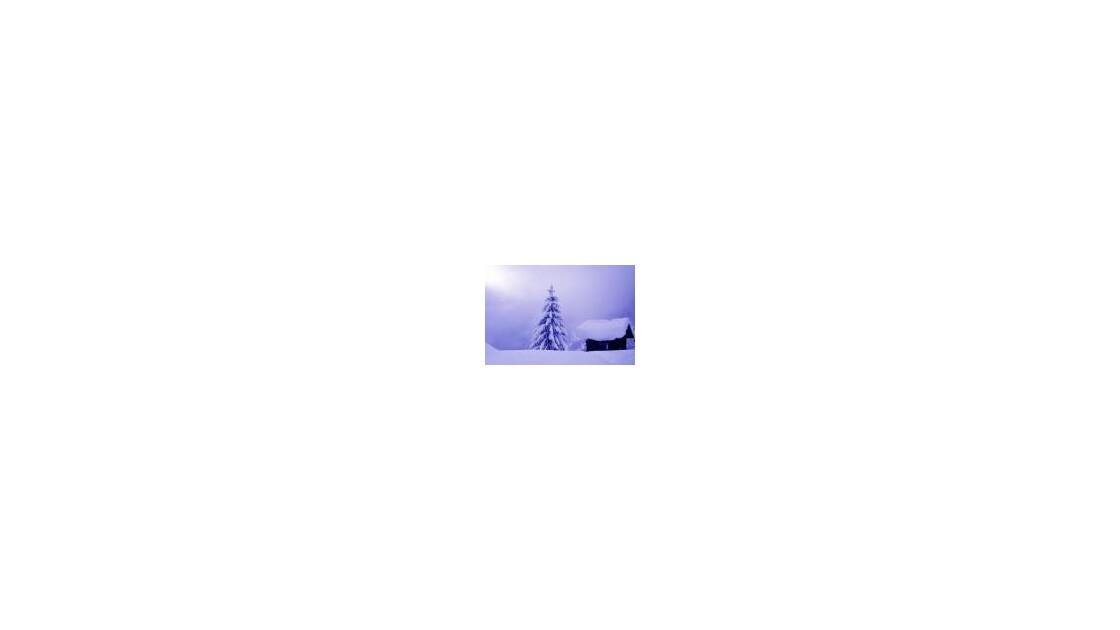 74__CHALET_NEIGE brouillard _.jpg