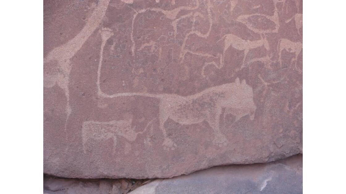 Peintures rupestres de Twyfeltontein