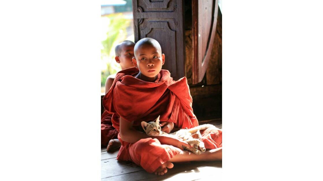 petit moine et son chat