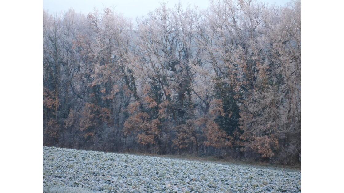 en_hiver.jpg