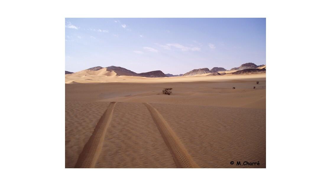 NIGER - 2004