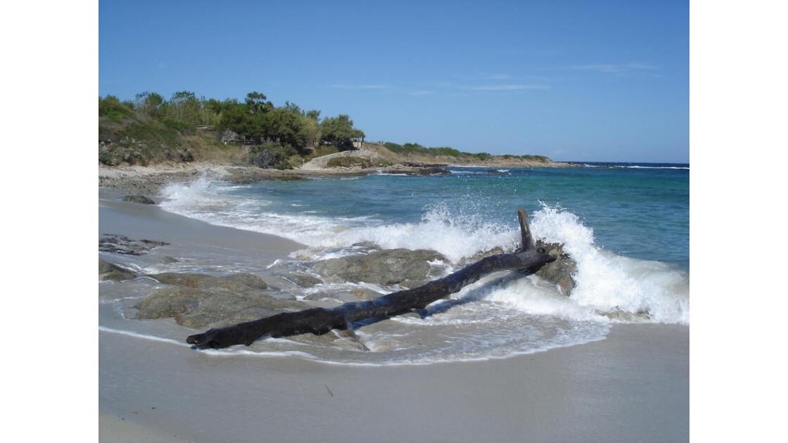 plage isolée Ile Rousse