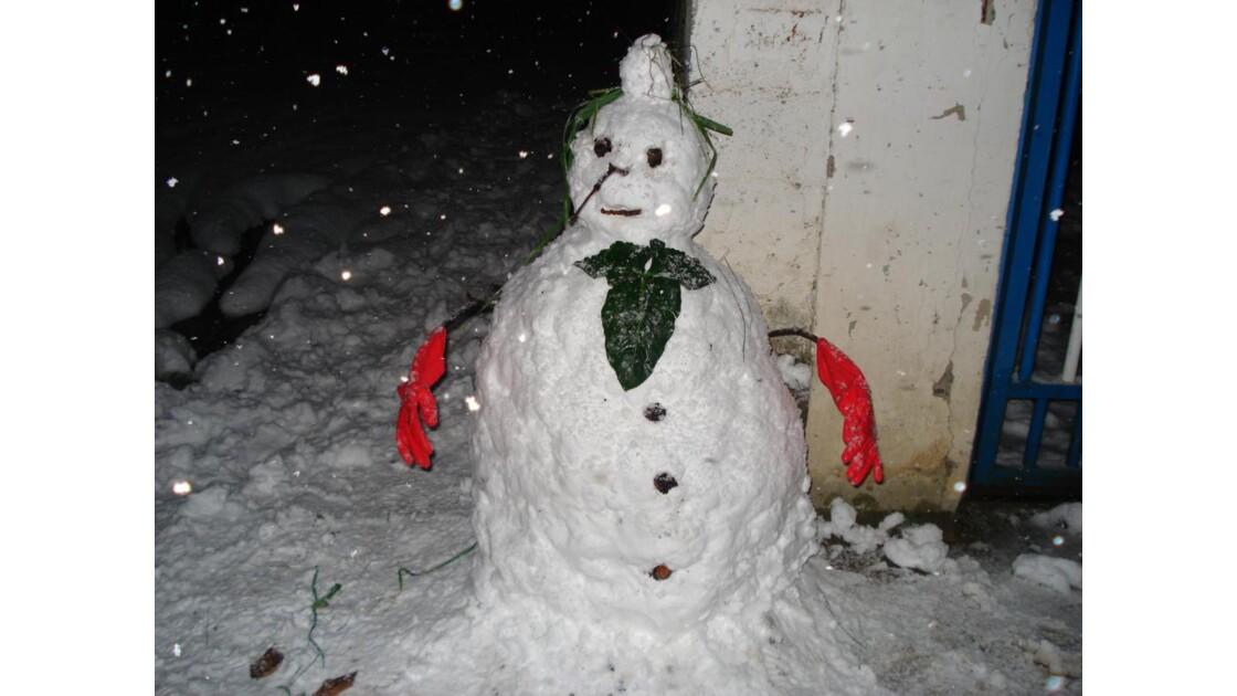dopo 1 nevicata....ecco il risultato