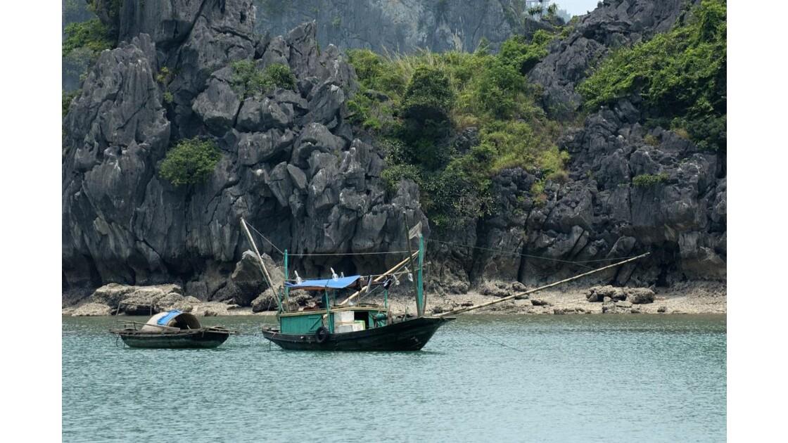 Pêcheurs sur la baie d'Ha long