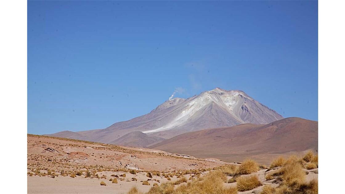 _MG_3124.jpg  Hauts plateaux Boliviens