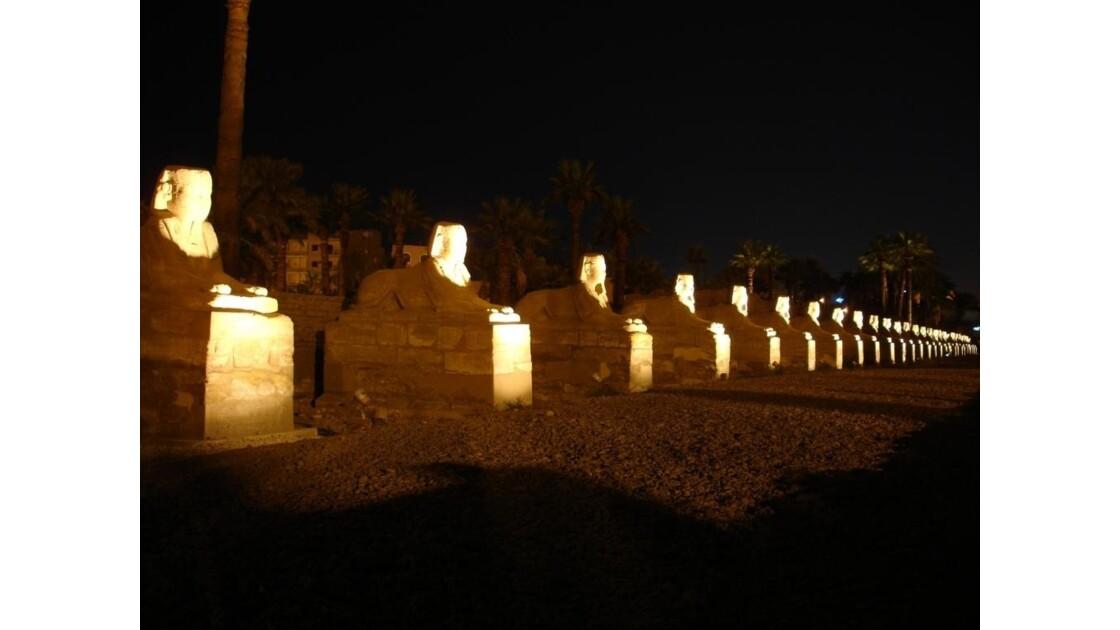 Egypte_Temple_de_Luxor_9.jpg