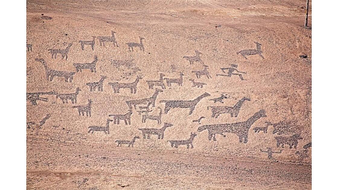 2047 Désert de l'Atacama