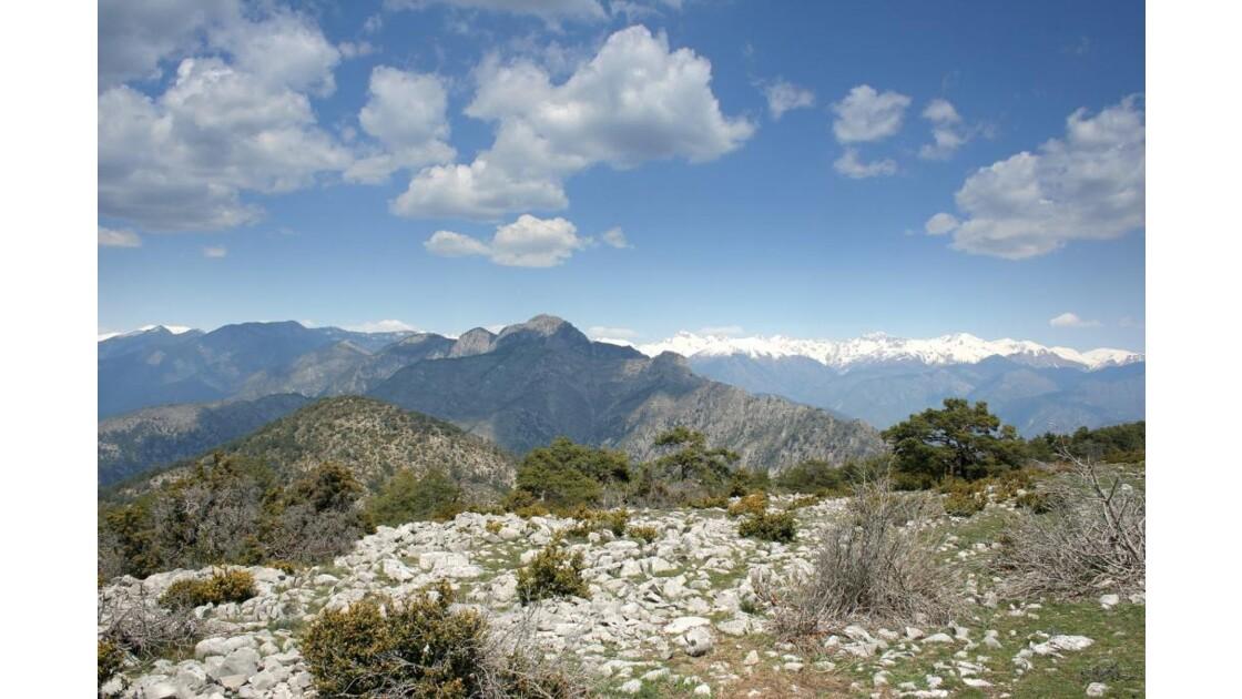 Provence_Utelle