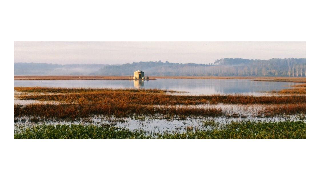 Reserve naturelle du Marais d'Orx