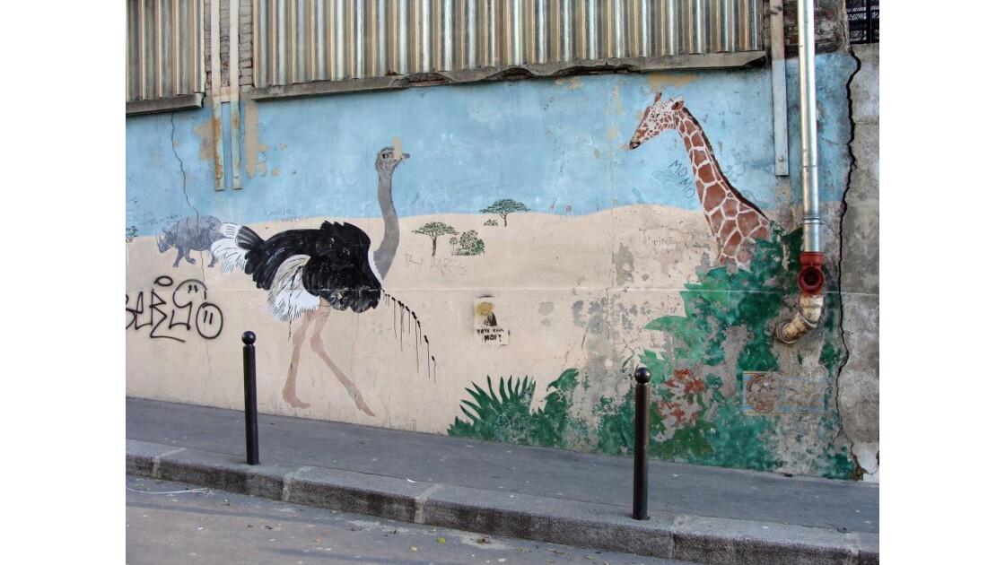 safari urbain!!