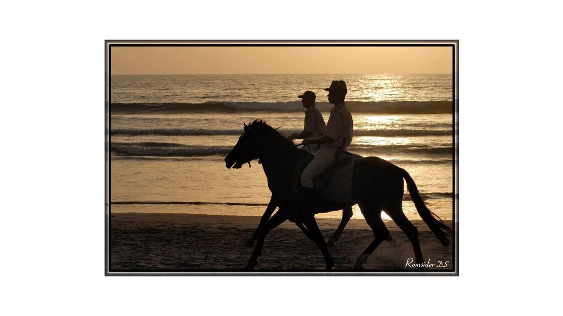 Silhouette Police à cheval, Maroc