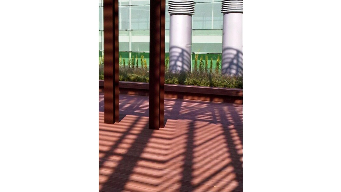 Shadows in the courtyard